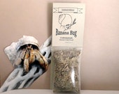 Hermit Crabs Food Banana Bug All-natural hermit crab pet food for molting by Crabotanicals molters molt food chitin
