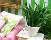 Small Snake Plant Houseplant Green White 1:12 Dollhouse Miniature Artisan