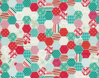 Clearance Fabric Riley Blake So Happy Together Happy Hexies In