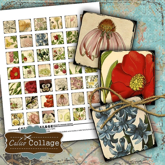 Simply Botanical - Digital Collage Sheets 1x1 inch Inchies size Images Printable Downloads for Square Pendants Bezel Trays Magnets