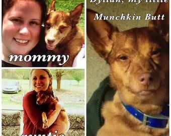 PERSONAL Aluminum Cuff Bracelet - Pet Memorial Bracelet  - Pet Memorial Jewelry, Loss of Dog Sympathy Keepsake - 1 free charm - Meet DYLLAN