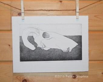 Skull etching Black & White