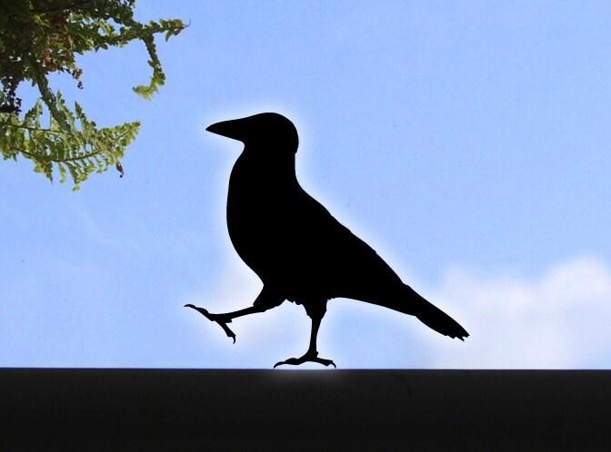 Bird Window Decals Popular Bird - Window alert decals for birds