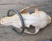 Anvil Forged Iron Bracelet Burnished Viking Torc torque Celtic