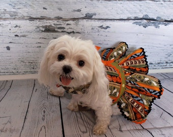 Dog Dress, Dog Harness Dress, Cute Dog Halloween Outfit, Custom Dog Dress, Ruffle, Dog Fashion for Small Dogs, Fancy Dress, Bolero, Ghosts