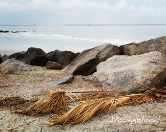 Photograph: Beach Seascape Nature Photography 8x10