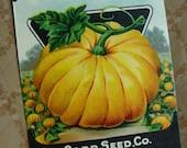 Antique Gorgeous Empty Seed Packet Unused Vintage Pumpkin  Garden Seed Vintage Halloween Ephemera