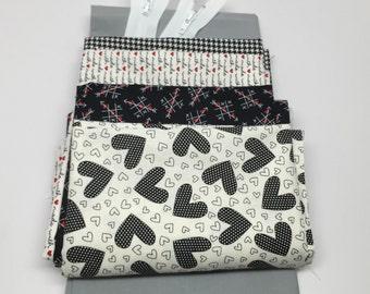 WINTER SALE - Zipper Pouch Kit - First Crush in Black - Sweetwater - Moda