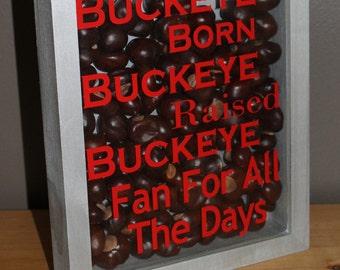 Ohio State Decor Buckeye Born Shadow Box