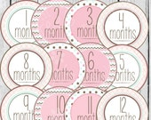 MONTHLY IRON-ONS Decals or Monthly Stickers - 12 Monthly iron on heat transfer - Baby girl - Pink, Rose, Mint & Taupe (Style#A13)