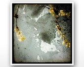 "Deluxe Signed 8""x8"" Print - Flower Splash"