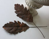 hold for paula - two vintage rusty tin leaves (please do not purchase unless you are paula)
