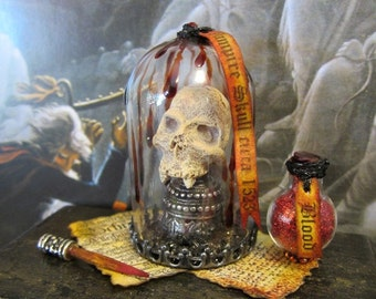 Vampire Skull circa 1523 dollhouse miniature, gothic, Vlad, spooky, haunted, Halloween, vampyre in 1/12 scale