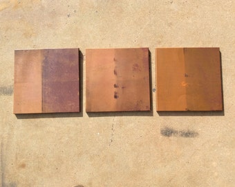 Shades of Copper / 3 piece wall art