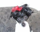Black color pet   wig  with red color bow for dog or cat
