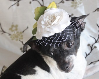 Cute  black color  mini  hat with   white   flowers for dog or cat