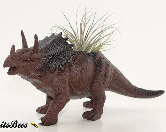 Triceratops Dinosaur Planter Pot - Room Decor, Desktop, Table, Dorm - Your Choice: Air Plant, Succulent, Haworthia or Cactus