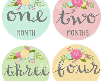 FREE GIFT, Monthly Baby Girl Stickers, Baby Month Stickers, Vintage Roses, Floral Stickers Milestone Bodysuit  Photo Prop Milestones