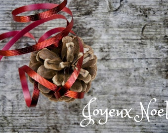 Joyeux Noel Photo Greeting Card, 4x5 christmas cards, blank inside, merry christmas, festive holiday winter seasonal rustic greetings french