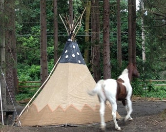 12 foot Handmade Tipi for Glamping, Camping or just Hanging Out