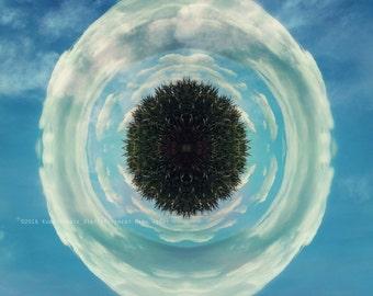 MANDALA 1 Photo Mandala  Abstract Original Color Art Photograph