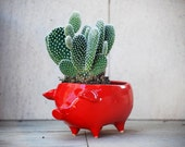 Ceramic Pig Planter Vintage Design in RED Succulent Planter Retro Sponge Holder Home Decor