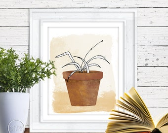Spider Plant in a Clay Pot - Plant Illustration - Printable 8x10