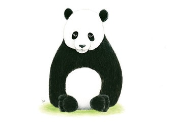 "Original PANDA BEAR Painting  Bear Painting PANDA Cub Original 8 x 10""  France  Nursery Art  Illustration Zoo Animal Painting  Childrens Art"