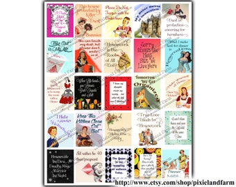 Snarky 50s Housewife Printable Planner Stickers Digital Download - Fits Erin Condren Life Planner