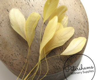 Stripped Coque Feather Hat Mount (10 Feathers) for Millinery & Fascinators - Golden