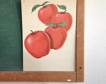 Vintage School Flashcard- Apples