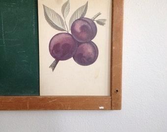 Vintage School Flashcard- Plums