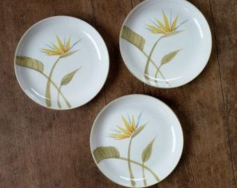 Winfield Salad Plates Bird of Paradise