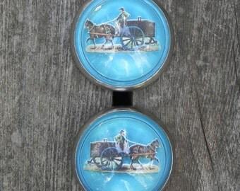 vintage, turquoise bridle rosettes, free shipping