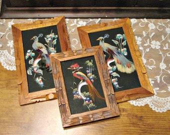 Mid Century Bird Art - Mexican Feather Art - Folk Art - Bohemian Decor - Wall Home Decor - Rustic Decor