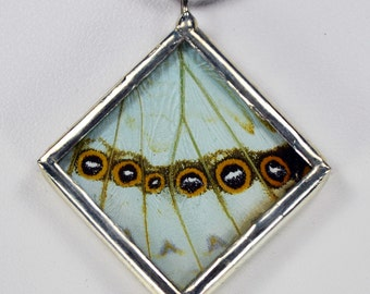 Marvelous Real Butterfly Necklace Morpho Catenarius Glass And Lead Free Solder