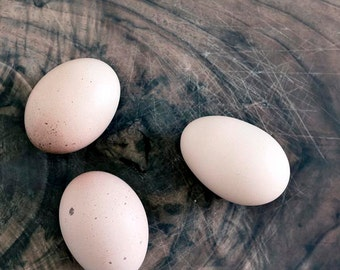 Brown Eggs Print, Rustic Kitchen Decor, Food Photography, Beige, Brown, Rusitc, Farm, Neutral, Eggs