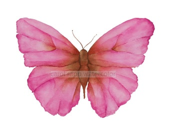 rose butterfly giclee print