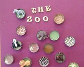 Zoo bottle cap 8 x 10 picture frame for Ashley