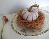 Bird Nest Pink Pumpkin October Fall Autumn Shabby Rustic OOAK Cottage Chic Home Decor