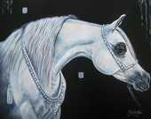Tahnja Original Art Mixed Media Painting White Arabian Horse Equine Tack Egyptian
