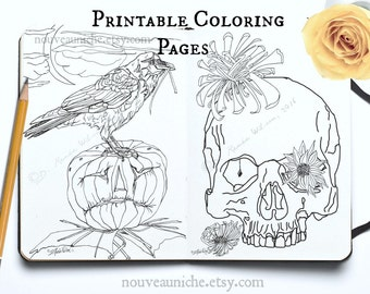 Halloween Printables Coloring Pages DIY Printable Decor Owl Crow Skull Jack-O-Lantern Spider Web Mandala Hand Drawn Halloween Decor Prints