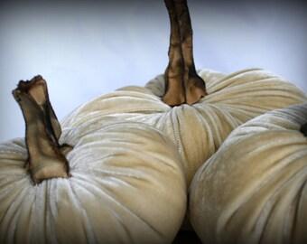 Pumpkin in Plush Velvet - Khaki  - large - with handmade stem