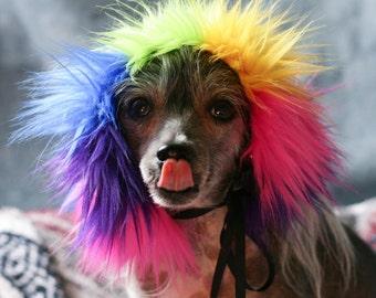 Large Rainbow Faux Fur Dog Costume Wig Hat