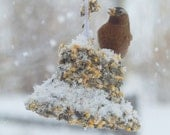 BIG BELL Bird Seed Feeder with hanger Organic - wreath - not from factory