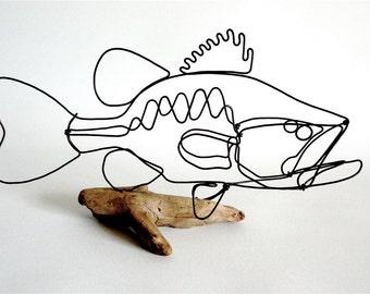 Bass Wire Sculpture, Fish Wire Art, Minimal Design Art, Wire Folk Art, 466744174