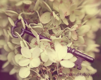 Skeleton key Photograph, Flowers, Abstract, Key, Photo, Print, Fine Art Photography, Nature, Garden, Home Decor, Art, Wall, Key, Shabby chic