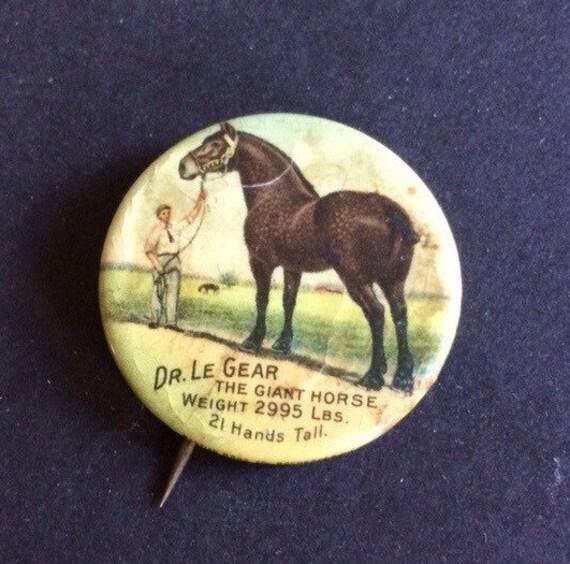 plus grand cheval 1911 m le du monde gear le cheval g ant. Black Bedroom Furniture Sets. Home Design Ideas