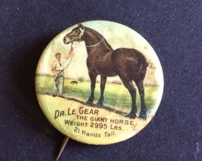 World's Largest Horse 1911 Dr. Le Gear The Giant Horse Vintage Pinback Button Pin