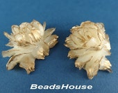 34-00-CA  2pcs High Quality Ice Cabbage Rose with Golden Petals - Ice Rose